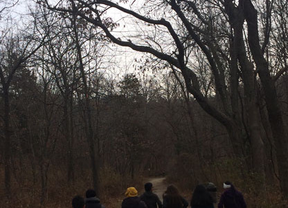 Ecology trip to Starved Rock rocks!