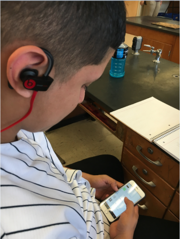 Senior Diego Almaraz searching for music.